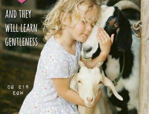 Kind Gentle-Inspiration for parents #5